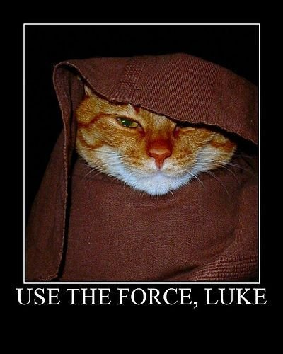 humor Use-The-Force