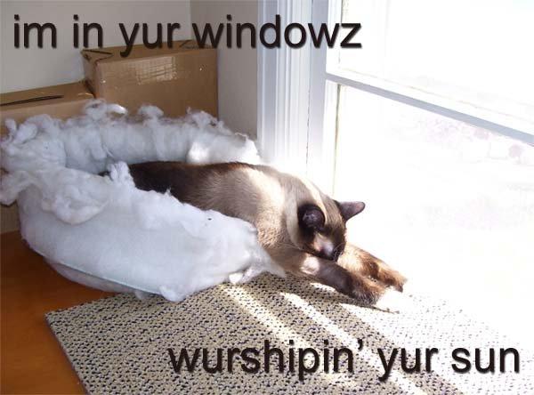 Wurshipin-sun