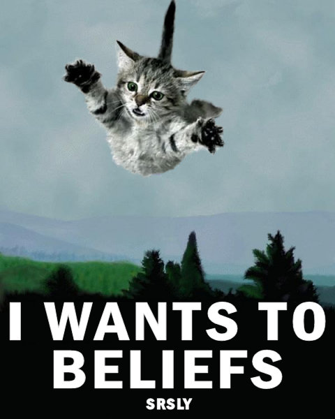 I Wants To Beliefs - Meme Cats