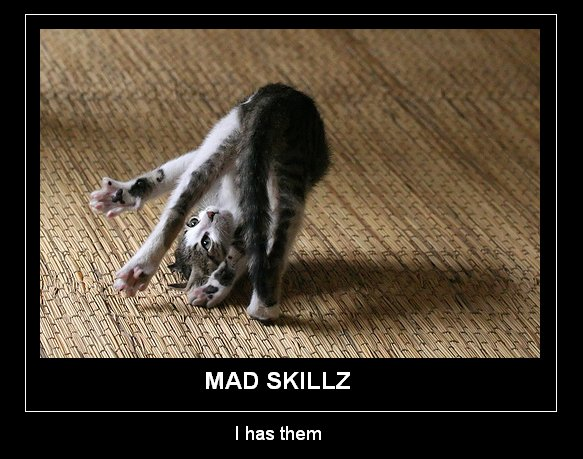 mad-skillz2